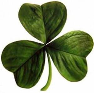 De 'Shamrock' is het symbool voor St. Patrick.